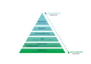 hypochlorous acid pyramid